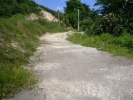 laurie_Jamaica_013