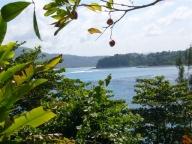 laurie_Jamaica_015