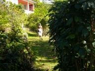 laurie_Jamaica_014